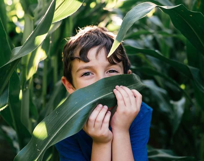 Niños autistas: otra manera de sentir